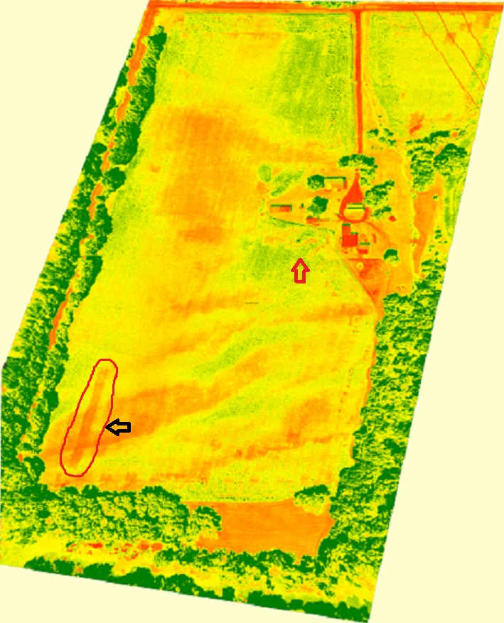 The Pacesetter helps you identify problems in your fields. Here is an actual example of an NDVI image shown from the Pacesetter software indicating where the tank ran out of anhydrous during side-dress application.